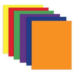 200 Bulk Bazic Asst. Color 2-Pockets Portfolios