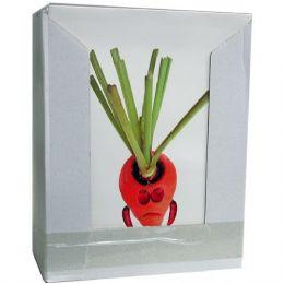 60 Bulk 2 Pocket Folders, Fun Fruits & Vegetables, In Display