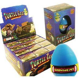 48 Bulk Growing Pet Turtle Eggs