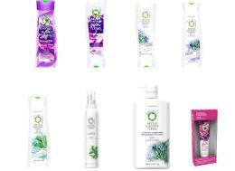 80 Bulk Herbal Essence Assorted Hair Care