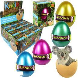 48 Bulk Growing Pet Koala Eggs