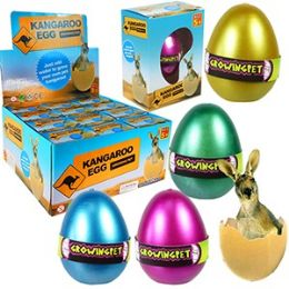 48 Bulk Growing Pet Kangaroo Eggs