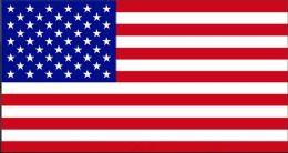 24 Bulk American Flag