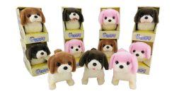72 Bulk B/o Dog With/ Color Box