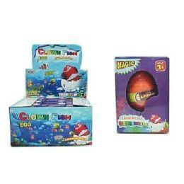 48 Bulk Clown Fish Grow Hatching Egg