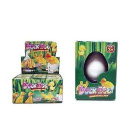 48 Bulk Duck Grow Hatching Egg