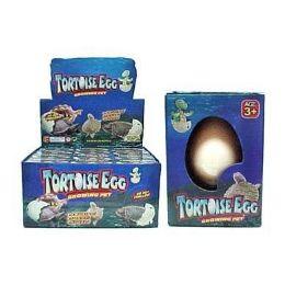 48 Bulk Turtle Grow Hatching Egg