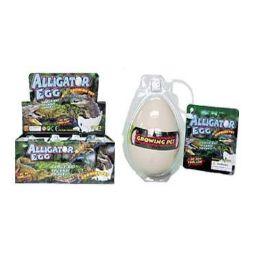 48 Bulk Grow Alligator Hatching Egg