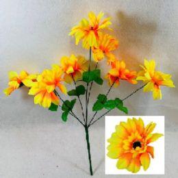 72 Bulk 7 Head Sun Flower