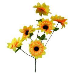 36 Bulk 6 Head sun flower