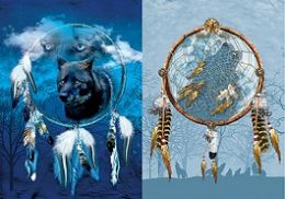 40 Bulk 3D Picture Dream Catcher With Wolf