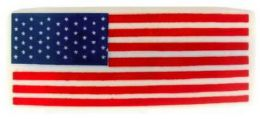 144 Bulk Hair Barrette Rectangular USA Flag Acrylic