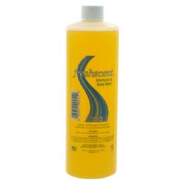 48 Bulk Freshscent 16 oz. Shampoo and Body Bath