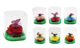 36 Bulk Floating Butterfly Sunny Jiggler