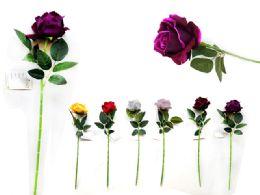 144 Bulk Rose 6 Layer