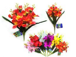 96 Bulk Gladiolus 5 Head