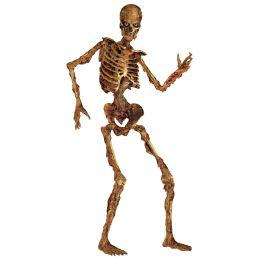 12 Bulk Jointed Skeleton