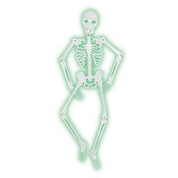 6 Bulk Mr BoneS-A-Glo Skeleton AlL-Weather NitE-Glo Plastic