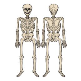 12 Bulk Vintage Halloween Jointed Skeleton Ptrd 2 Sides W/different Designs