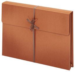 "50 Bulk Wallet Envelopes With Tie Closures, Legal Size, 2"" Expansion"