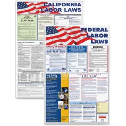 Bulk Advantus Federal And State Labor Law Poster