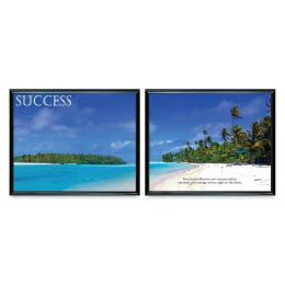 "15 Bulk Advantus Motivational ""success"" Poster"